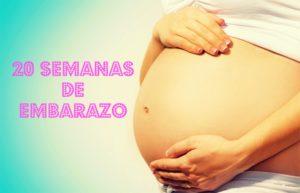 semana 20 embarazo fruta