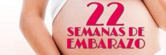 Semana 22 embarazo