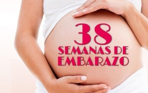 semana 38 embarazo peso bebe
