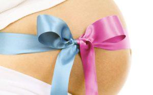 embarazo subrogado