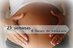 semana 23 embarazo kilos
