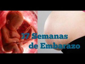 semana 37 embarazo sintomas
