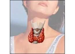 tiroides embarazo niveles
