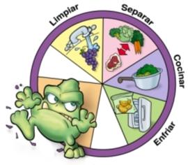 toxoplasmosis embarazo prueba